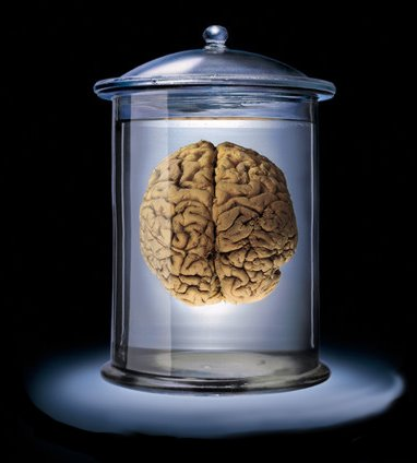 brain_lab-710283.jpg